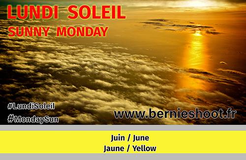 ob_e51caa_soleil-juin-jaune-yellow