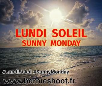 ob_b8e5ce_lundi-soleil-sunny-monday-logo-officie
